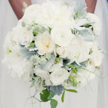 220x220 sq 1456767832083 white and green bouquet with dusty miller