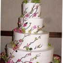 130x130_sq_1221536544727-cake0015