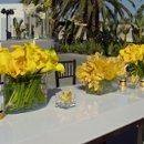 130x130 sq 1220836634884 yellowflowers