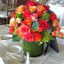 130x130_sq_1343237178499-coralandsucculents