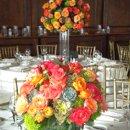 130x130_sq_1343237209091-coralandsucculents2