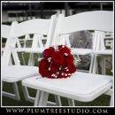 130x130 sq 1263940150404 weddingphotographerarlingtonheights