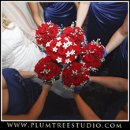 130x130 sq 1263940153123 weddingphotographercrystallake