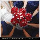 130x130 sq 1263940153123 weddingphotographercrystallake