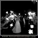 130x130 sq 1263940154529 weddingphotographerlonggrove