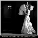 130x130 sq 1263940168716 weddingphotographyarlingtonheights