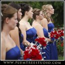 130x130 sq 1263940179763 weddingphotographersnorthbrookillinois