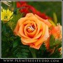 130x130_sq_1263940208919-weddingphotographywestin
