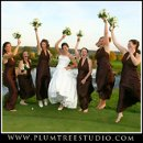 130x130 sq 1263940211373 weddingphotographywheelingillinois