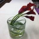 130x130 sq 1416074955020 simple calla lily