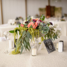 220x220 sq 1452287656792 at home farm wedding b2127d9