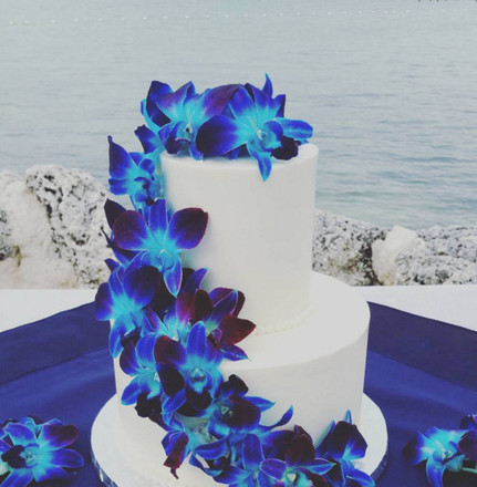 wedding cake key west florida key largo wedding cakes reviews for cakes 23001