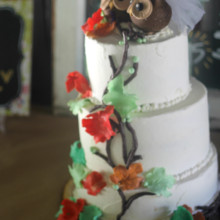 220x220 sq 1453314887176 owl wedding cake 2