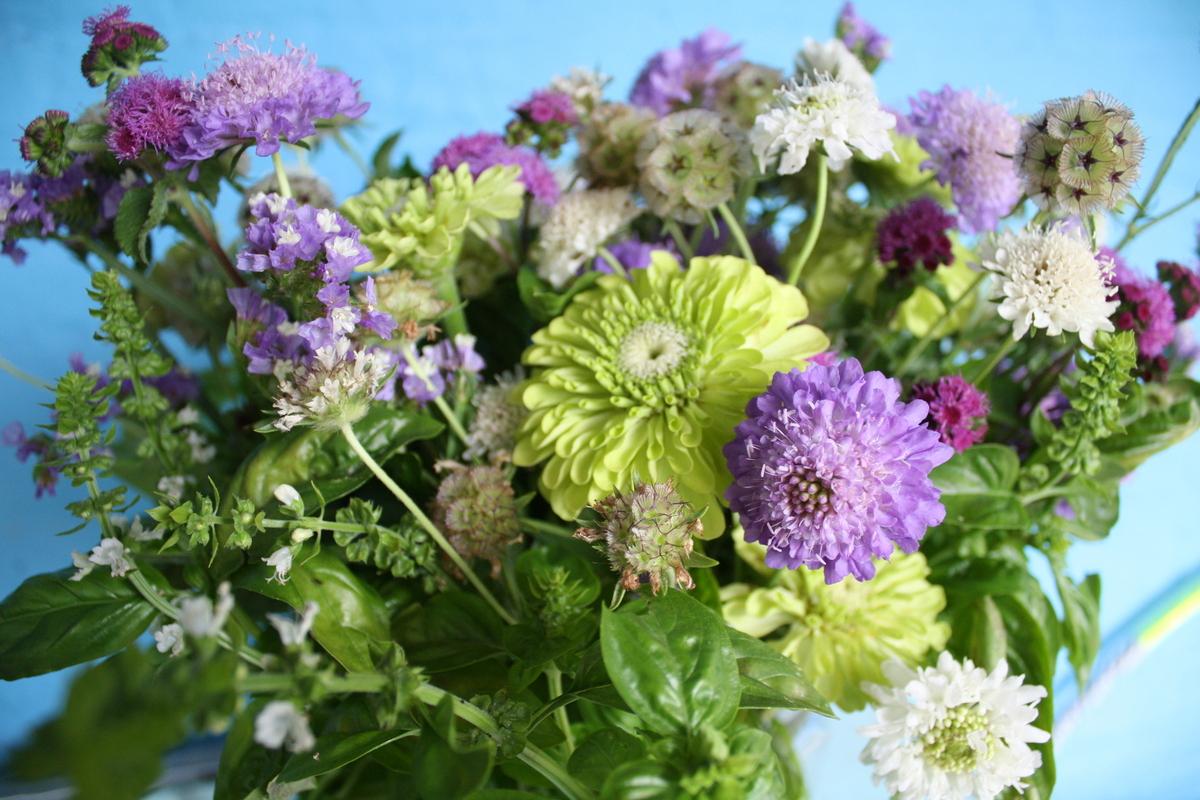 Baltimore Wedding Florists Reviews For Florists