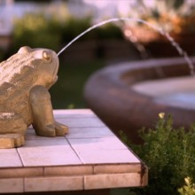 220x220 sq 1486067408422 frog fountain