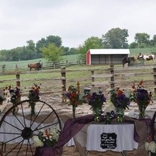 220x220 sq 1455559352 3edb56f0f26d9184 1454400751541 view of horses from ceremony 2