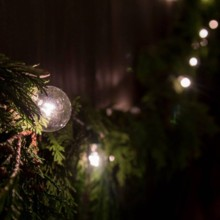 220x220 sq 1457023963341 dec5weddinglightsandfoliage