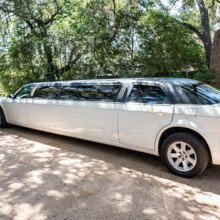 "<strong class='info-row'>Svetlana Photography</strong> <div class='info-row description'><html>  <head></head>  <body>    A classic white limousine was the getaway car.   Venue:    <a href=""https://www.weddingwire.com/biz/the-vista-on-seward-hill-austin/8620a87097a99c38.html"" target=""_blank"">The Vista on Seward Hill</a>   </body> </html></div>"