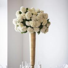 """<strong class='info-row'>Pond Photography</strong> <div class='info-row description'><html>  <head></head>  <body>    """"I wanted something big, bold and over the top that would make a statement,"""" Jennifer said of the florals.     <span class=""""s1"""">Reception Venue: <a href=""""https://www.weddingwire.com/biz/the-brass-on-baltimore-kansas-city/38e651de12a08110.html""""><span class=""""s2"""">Brass on Baltimore</span></a></span>     <span class=""""s1"""">Event Planner: <a href=""""https://www.weddingwire.com/biz/madison-sanders-events-liberty/bfd7956686c7ed3d.html""""><span class=""""s2"""">Madison Sanders Events</span></a></span>  Flowers:    <a href=""""https://www.weddingwire.com/biz/good-earth-floral-design-studio-overland-park/f0497b6bc386f384.html""""><span class=""""s2"""">Good Earth Floral Design Studio</span></a>     <span class=""""s3"""">Rentals: <a href=""""https://www.weddingwire.com/biz/bbj-linen-lake-orion/e9907158f5762e8c.html""""><span class=""""s2"""">BBJ Linen</span></a></span>   </body> </html></div>"""