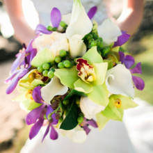 "<strong class='info-row'>Joanna Tano Photography</strong> <div class='info-row description'><html>  <head></head>  <body>    The bright, island inspired bridal bouquet featured orchids, calla lilies, and hypericum berries.   Venue: White Orchid Beach House from    <a href=""https://www.weddingwire.com/biz/a-white-orchid-wedding-inc-wailuku/613a4afe72f6cb8d.html"" target=""_blank"">A White Orchid Wedding, Inc.</a>  Floral Design:    <a href=""https://www.weddingwire.com/reviews/teresa-sena-designs-kula/e68fec6403a0ee30.html"" target=""_blank"">Teresa Sena Designs</a>   </body> </html></div>"