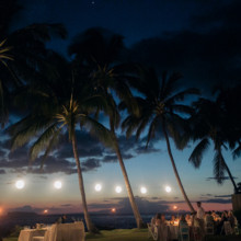 "<strong class='info-row'>Joanna Tano Photography</strong> <div class='info-row description'><html>  <head></head>  <body>    Guests enjoyed the beautiful Hawaiian scenery during the outdoor reception.   Venue: White Orchid Beach House from    <a href=""https://www.weddingwire.com/biz/a-white-orchid-wedding-inc-wailuku/613a4afe72f6cb8d.html"" target=""_blank"">A White Orchid Wedding, Inc.</a>   </body> </html></div>"