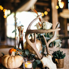 <strong class='info-row'>Erin Morrison Photography</strong> <div class='info-row description'><html>  <head></head>  <body>    Fall-themed centerpieces featured antlers and miniature pumpkins.  Venue: Tuckaway Cove  Floral Design: Kroger   </body> </html></div>