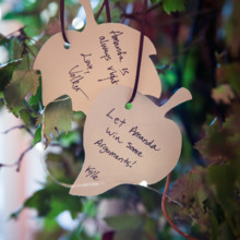 "<strong class='info-row'>Femina Photo + Design</strong> <div class='info-row description'><html>  <head></head>  <body>    Guests wrote words of wisdom on paper leaves and hung them on a tree.  Venue:    <a href=""https://www.weddingwire.com/biz/dupont-country-club-and-brantwyn-estate-wilmington/4c1b5d56634cbc07.html"">Brantwyn Estate</a>  Floral Design:    <a href=""https://www.weddingwire.com/biz/a-garden-party-elmer/7f876b0ec1188a61.html"">A Garden Party</a>   </body> </html></div>"
