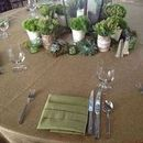 130x130 sq 1463064449 3bf7adfd02ac9e28  258 faux burlap with  245 peapod hemstitch napkins