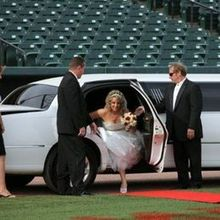 Diamond Limousines, Inc.