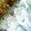 130x130 sq 1222273306199 ballroomchaircovers flowers07