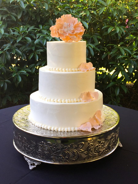 sandy 39 s sweets tallahassee fl wedding cake. Black Bedroom Furniture Sets. Home Design Ideas