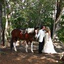 130x130 sq 1234452902906 weddingwire10