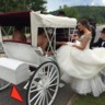 96x96 sq 1484336305414 bride in horse  carriage
