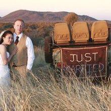 220x220 sq 1484092028 553c92e915f0c0f6 tuningi wedding 02