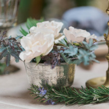 220x220 sq 1486762722988 7th place styled shoot.aura elizabeth photography