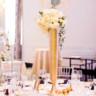96x96 sq 1505146608714 mayflower hotel washington dc wedding photographer