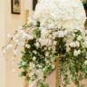 96x96 sq 1505146639935 mayflower hotel washington dc wedding photographer