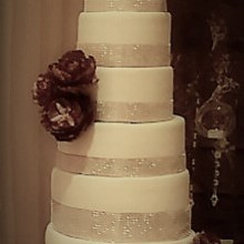 Dani Cakes - Wedding Cake - Houston, TX - WeddingWire