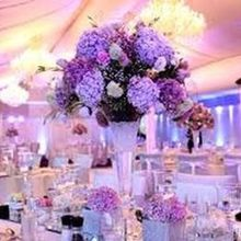 Elegance and Style Weddings