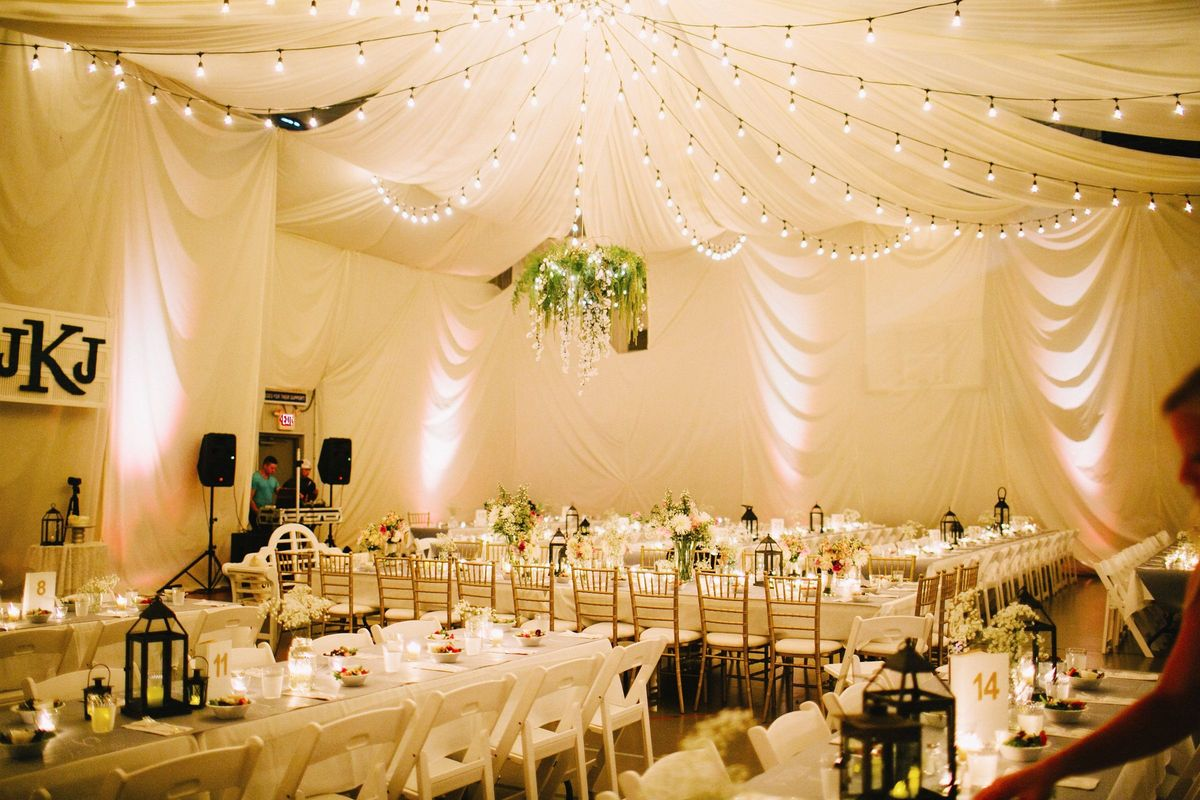 wedding reception crowne plazspringfield il%0A download free cover letter