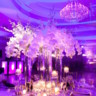 96x96 sq 1491847778599 your ultimate guide to wedding lighting bridal mus