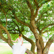 220x220 sq 1510806301768 torregosa wedding corolla north carolina wedding b
