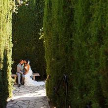220x220 sq 1499200095 01cb3e1da3a4b2e1 gil wedding 1708