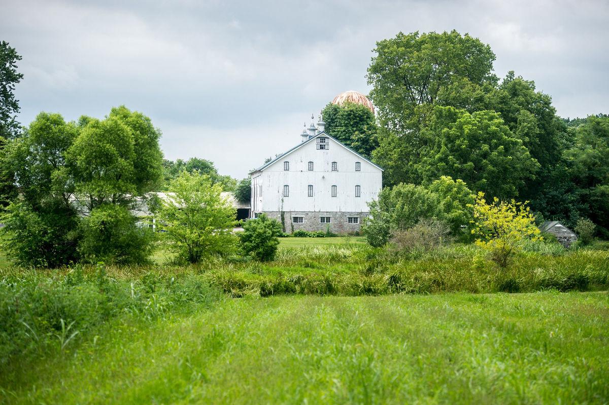 Big White Barn - Venue - Frederick, MD - WeddingWire