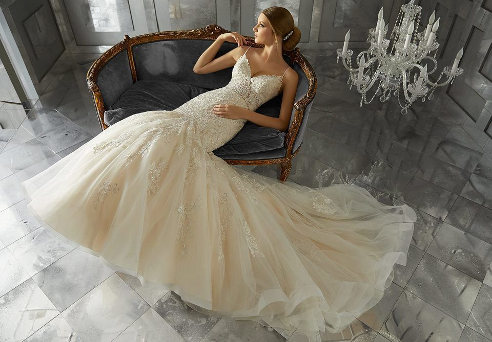 Delray beach wedding dresses reviews for dresses amazing brides couture solutioingenieria Choice Image