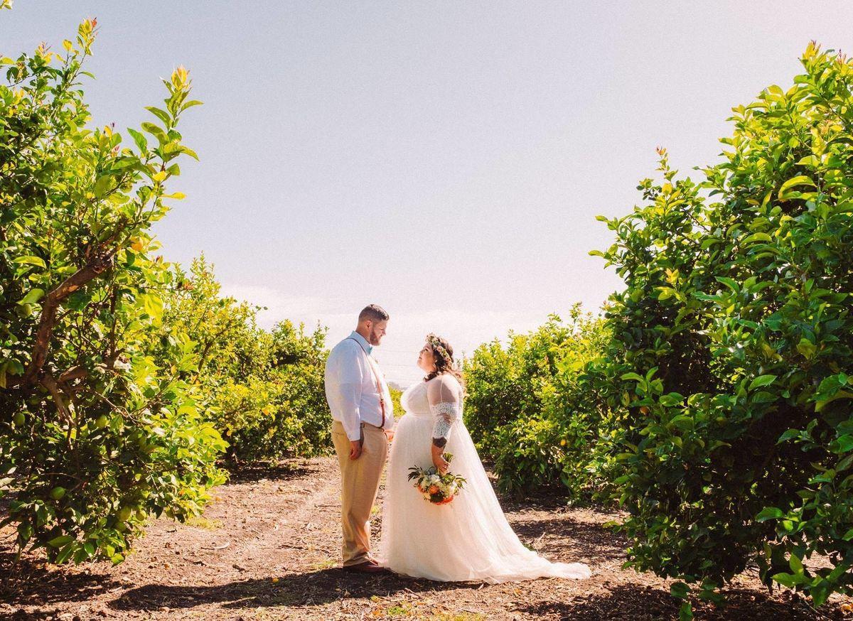avila beach wedding venues reviews for venues