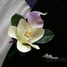 220x220 sq 1505309840750 silvercord south photography columbia sc wedding p