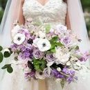 130x130 sq 1528898401 13d15327beecf6df lilac palette styled shoot compressed 0066