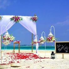 220x220 sq 1522792569 cfeabfcdbfa1165d 1522792568 e0712a60910c494c 1522792570404 4 destination weddin