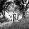 96x96 sq 1511834852026 sydneydoug wedding 291